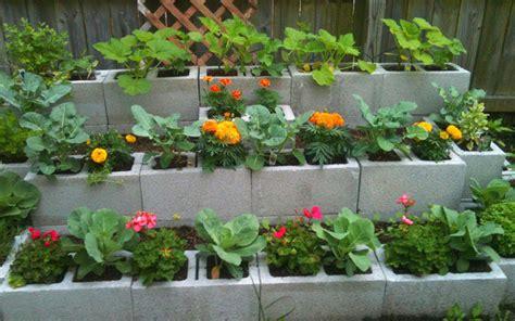 15 creative cinder block raised garden beds garden