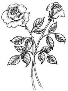 gambar pemandangan sketsa gambar bunga