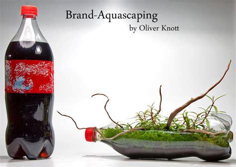 oliver knott aquascaping oliver knott aquascapi sequa