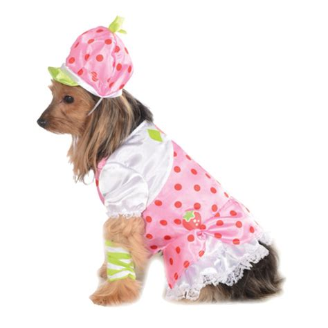 dogs and strawberries strawberry shortcake costume baxterboo