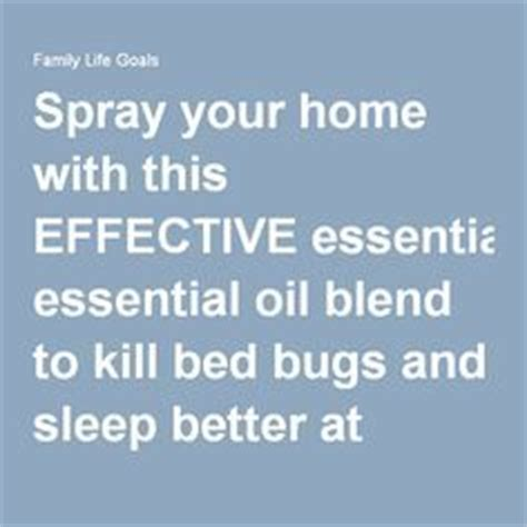 home remedies for bed bugs dryer sheets 1000 ideas about killing bed bugs on pinterest bed bugs
