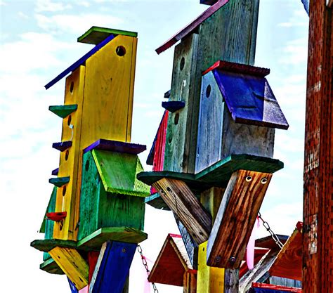 colorful bird houses colorful bird houses free stock photo domain pictures