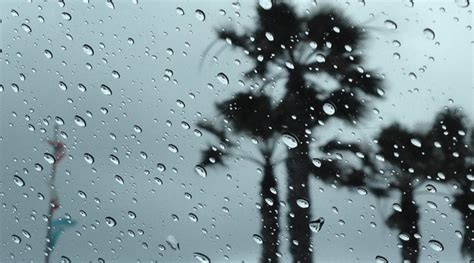 first spring storm expected to bring heavy rain gusty