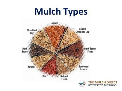 garden mulch types different types of mulch pictures to pin on