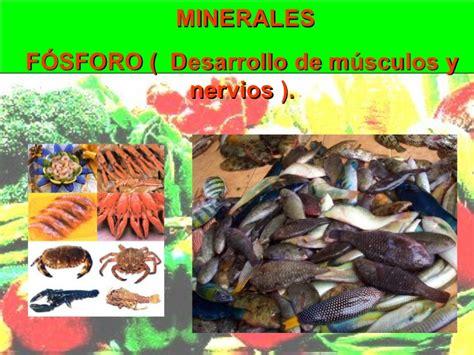 minerales en alimentos los alimentos vitaminas y minerales