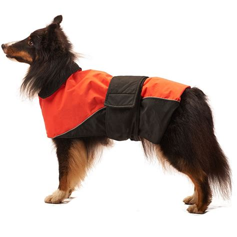 puppy coats fashion pet lookin waterproof reflective coat orange coats