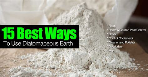 How Does A Complete Detox Take With Diatomaceous Earth by 15 Best Ways To Use All Diatomaceous Earth