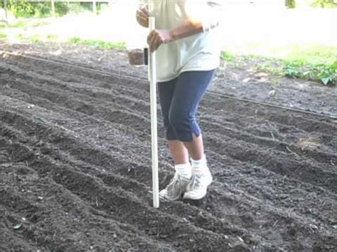 Held Seed Planter by Seed Planter