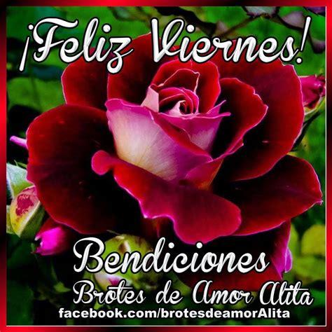 imagenes feliz viernes con rosas brotes de amor 161 feliz viernes