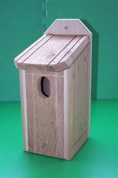 blue bird house hole size eastern and western bluebird bird houses by knwoodworks