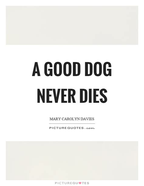 the lincoln chronicles puppy wisdom for happy living books a never dies picture quotes
