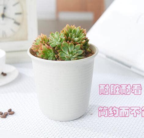 Pot 12 5 Gram Pp Bunga Putih gratis pengiriman tipe b chunky warna putih vientiane