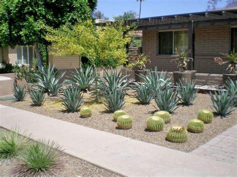 xero pro modern garden landscape design phoenix