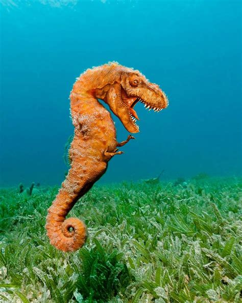 criaturas fantsticas 15 incre 237 bles criaturas fant 225 sticas nacidas en photoshop