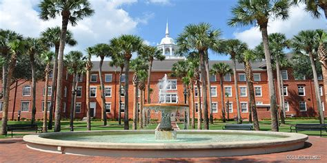 Univeristy Of South Florida St Petersburg Mba by Florida Colleges Universities Collegetimes