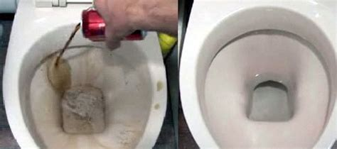 What Can I Use To Clean Shower by Things You Can Use To Clean Your Bathroom That You