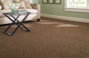 image gallery home depot carpet