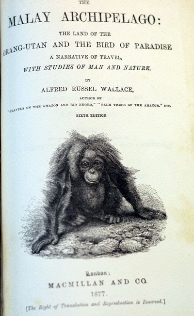 malay archipelago alfred russel wallace