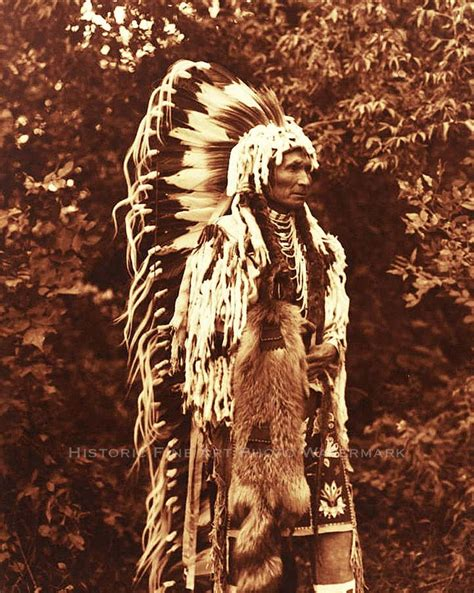native american indian home decor 17 best images about native american historic photos on