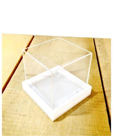 vasi in plexiglass vaso per piante grasse e succulente in plexiglass trasparente