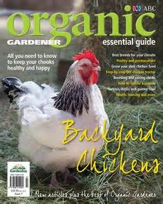 in the garden on pinterest australia gardening and products