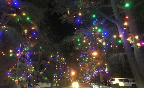 what are the dates for christmas tree lane in fresno enchanted forest of light at descanso gardens an ideal date idea