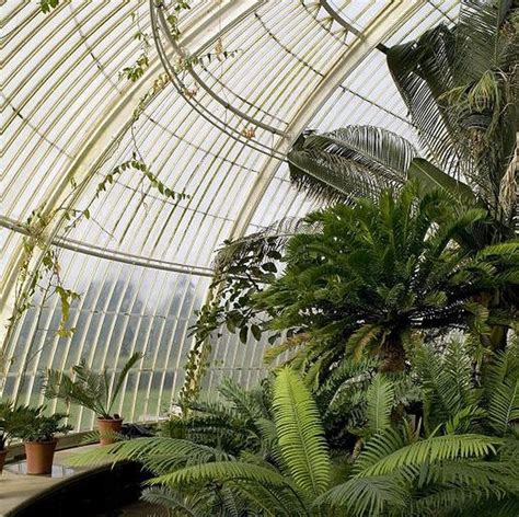 Palm House Botanic Gardens 1000 Images About Conservatories On Pinterest National Trust Bespoke And The Conservatory