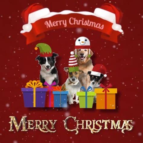 christmas party free humor pranks ecards greeting christmas with dogs free humor pranks ecards greeting
