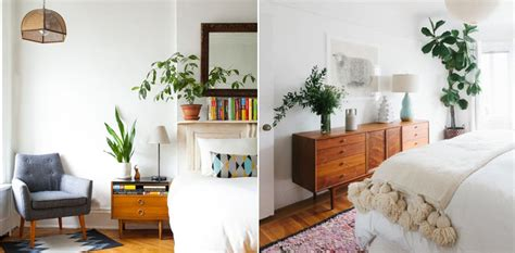 bedroom with plants running in heels decorating with house plants running