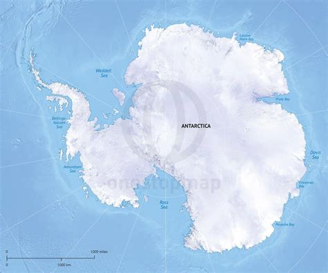 map of antarctica vector map antarctica continent relief one stop map