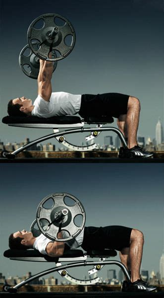 the perfect bench press the perfect bench press visit our website at http www