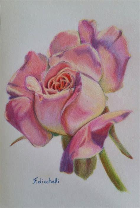 disegno di rosa fiore