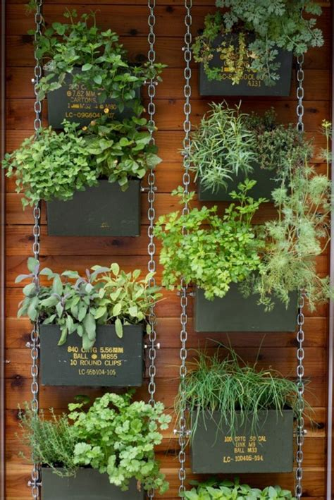 herbs on wall 1000 ideas about vertical herb gardens on pinterest diy