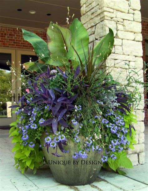 Large Container Container Gardening Pinterest Large Container Gardening Ideas