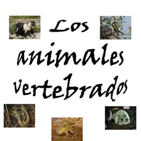 imagenes de figuras educativas aprendiendo cono con internet cm 5 186 los animales