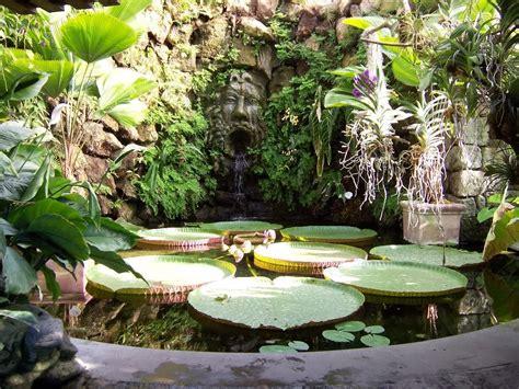 giardini la mortella ischia i quot giardini la mortella quot oasi incantata voluta dal