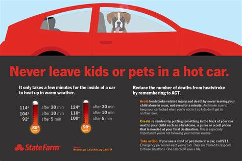 leaving in car no dogs left state farm