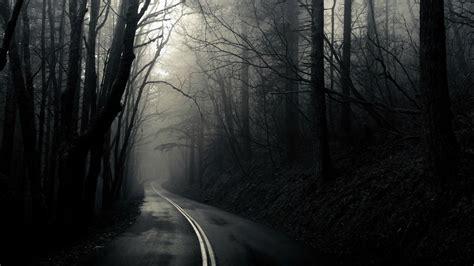 wallpaper dark road road through the dark woods full hd wallpaper and