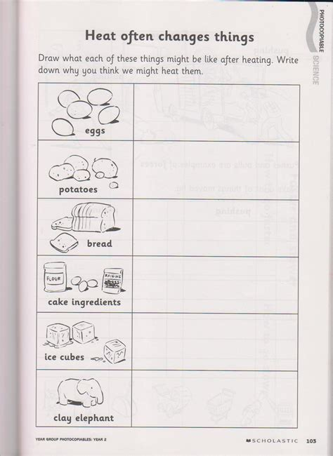 science worksheets for year 2 worksheets for year 2 science them 2 7th grade