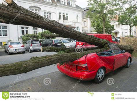 car with tree image car damaged by tree editorial photo image 41870726