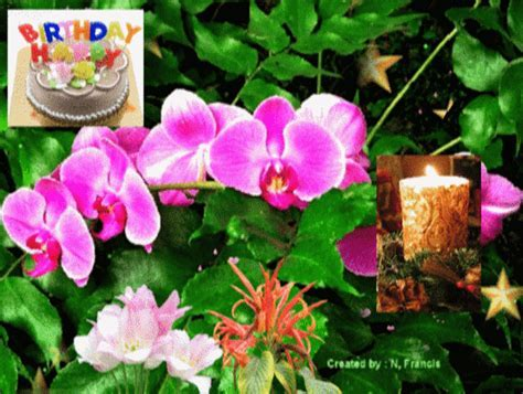 Bunch Of Flowers On Your Birthday! Free Birthday Wishes
