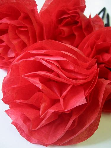 Tissue Paper Roses - tissue paper flowers flickr photo