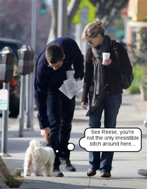 Reese Witherspoon And Jake Gyllenhaal Are Ticking Me 3 by Pooch Says Hi To Jake Gyllenhaal And Reese Witherspoon