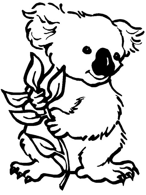 Koalas Coloring Pages koala coloring pages