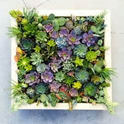 Indoor Vertical Succulent Garden Vertical Succulent Wall Planter In Easy Steps Diy