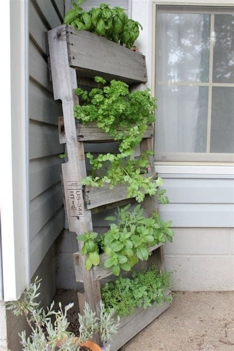 herb shelf herb garden pallet shelf pallets pinterest