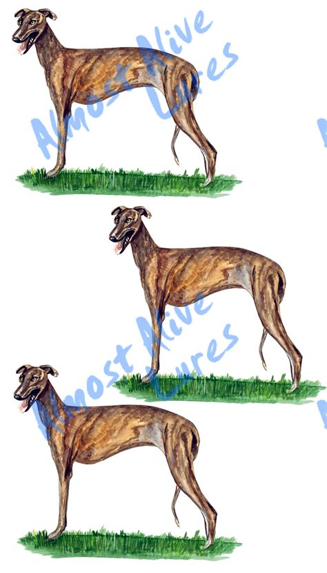 Auto Decals Hunting by Greyhound Large Dog Racing Hunting Decal Sticker Auto