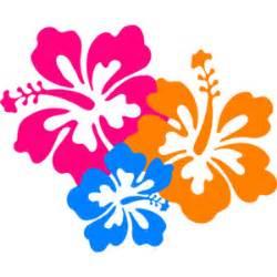 Hibiscus flower 6 clip art polyvore