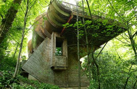 organic house lofted forest home organic materials