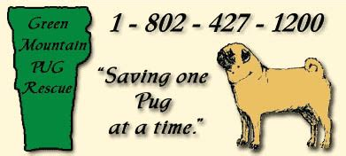 arvay pugs all pugs gifts apparel other merchandise links